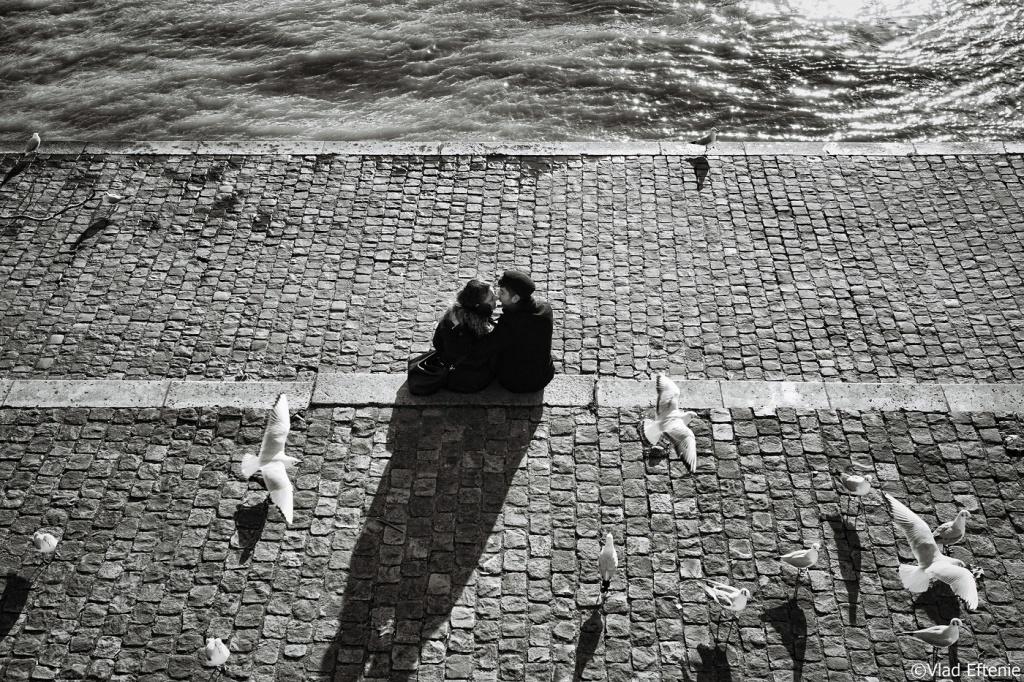 Saruturi fotografiate de Vlad Eftenie (2)